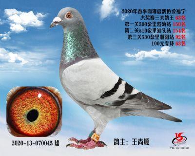 霞浦���f三�P��王63名