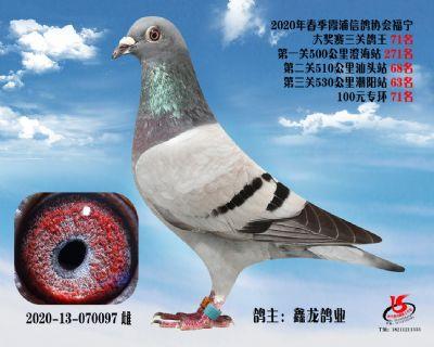 霞浦���f三�P��王71名