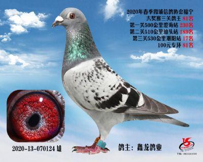 霞浦���f三�P��王81名