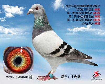 霞浦���f三�P��王89名
