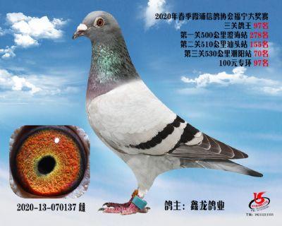霞浦���f三�P��王97名