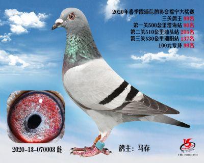 霞浦���f三�P��王99名