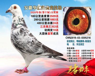 安徽�A�R�Q�24名