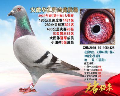 安徽�A�R�Q�26名