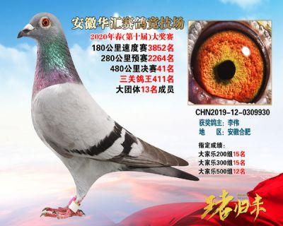 安徽�A�R�Q�41名