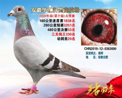 安徽�A�R�Q�53名