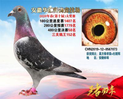 安徽�A�R�Q�58名