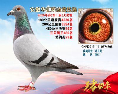 安徽�A�R�Q�59名