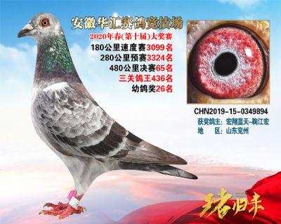 安徽�A�R�Q�65名