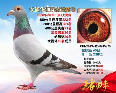 安徽�A�R�Q�71名