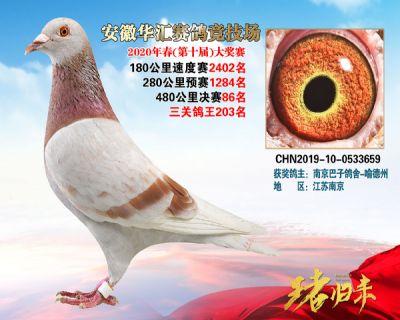 安徽�A�R�Q�86名