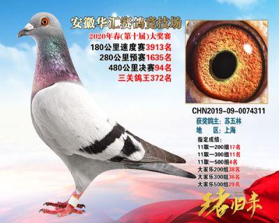 安徽�A�R�Q�94名