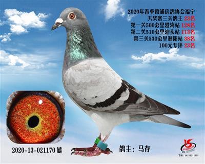 霞浦���f三�P��王23名