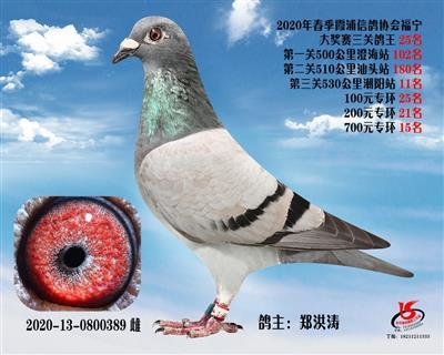 霞浦���f三�P��王25名