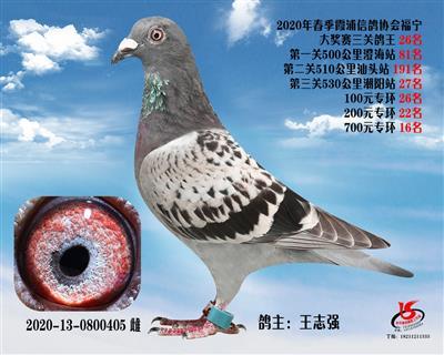 霞浦���f三�P��王26名