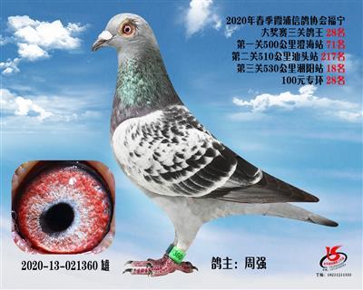 霞浦���f三�P��王28名