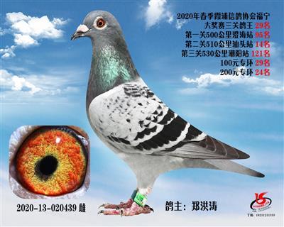 霞浦���f三�P��王29名