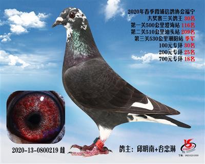 霞浦���f三�P��王30名