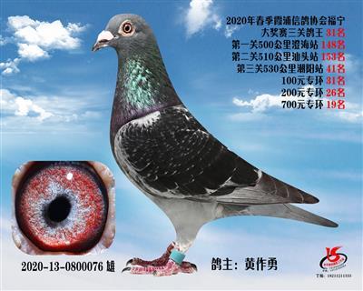 霞浦���f三�P��王31名
