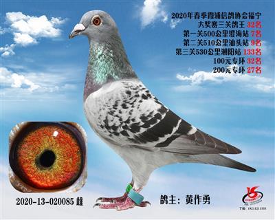 霞浦���f三�P��王32名