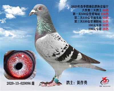霞浦���f三�P��王34名
