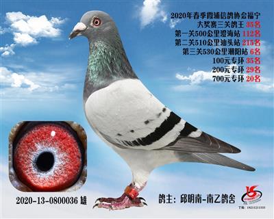 霞浦���f三�P��王35名