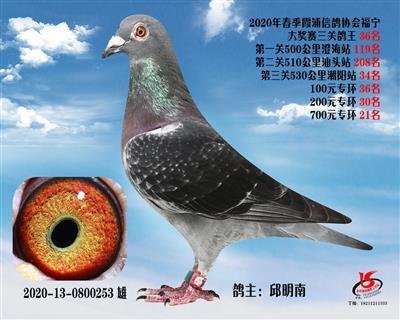霞浦���f三�P��王36名