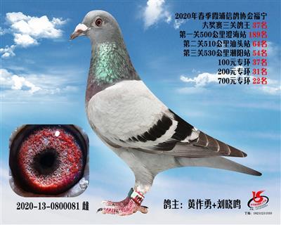 霞浦���f三�P��王37名