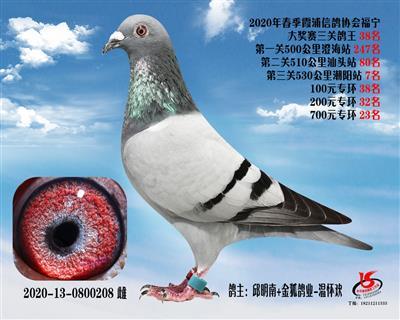 霞浦���f三�P��王38名