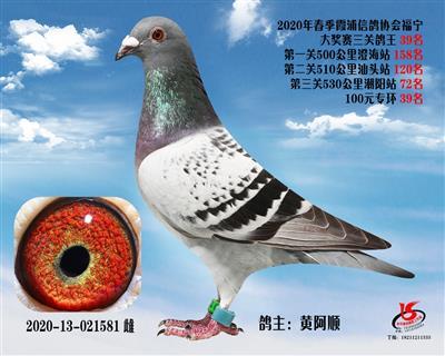 霞浦���f三�P��王39名