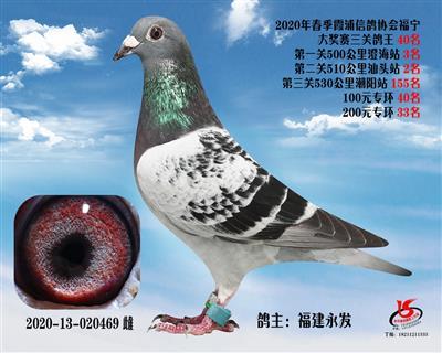 霞浦���f三�P��王40名