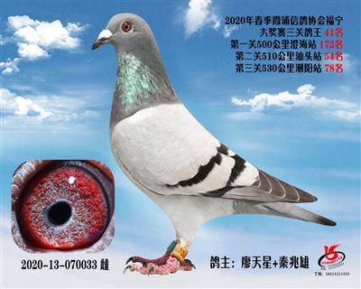 霞浦���f三�P��王41名