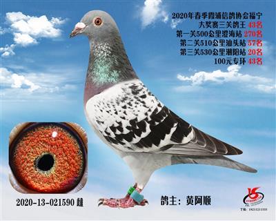 霞浦���f三�P��王43名