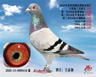 霞浦���f三�P��王44名