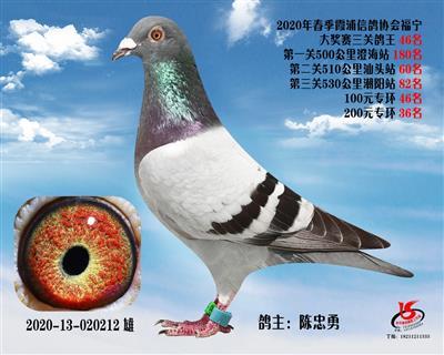 霞浦���f三�P��王46名
