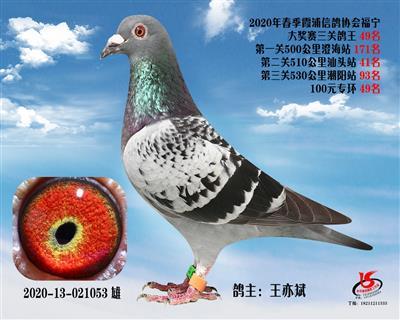 霞浦���f三�P��王49名