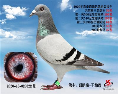 霞浦���f三�P��王50名