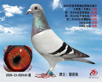 霞浦���f三�P��王51名