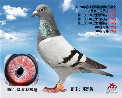 霞浦���f三�P��王52名