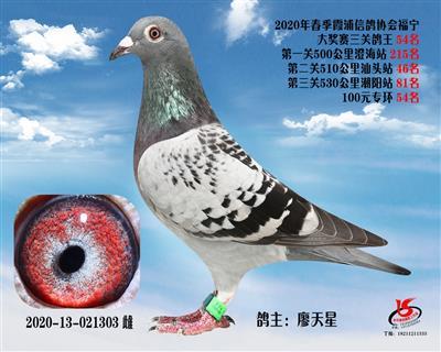 霞浦���f三�P��王54名
