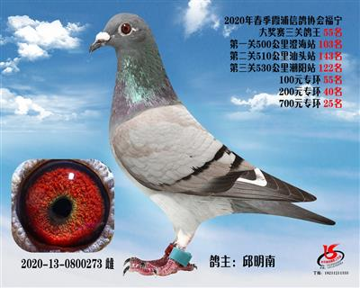 霞浦���f三�P��王55名