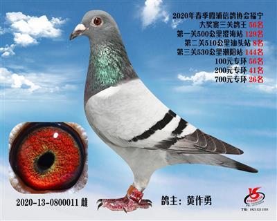 霞浦���f三�P��王56名