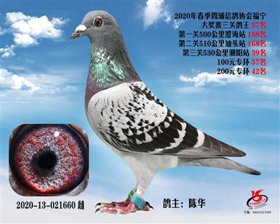 霞浦���f三�P��王57名