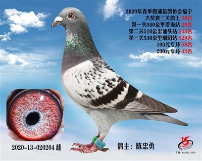 霞浦���f三�P��王58名