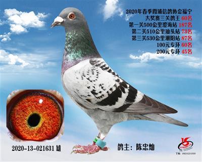 霞浦���f三�P��王60名