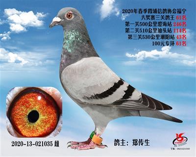 霞浦���f三�P��王61名