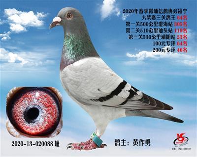 霞浦���f三�P��王64名