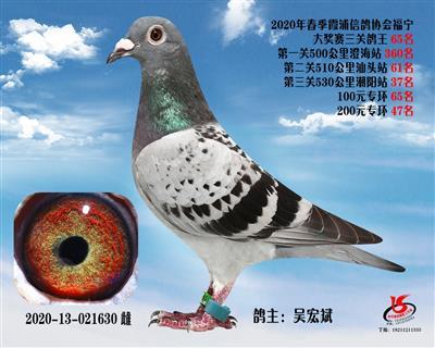 霞浦���f三�P��王65名