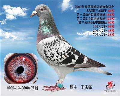 霞浦���f三�P��王66名