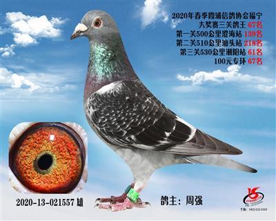 霞浦���f三�P��王67名